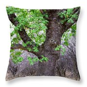 Squirrels Live Here Throw Pillow