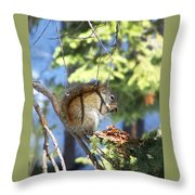 Squirrels Spring Meal Throw Pillow
