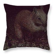 Squirrely Art Throw Pillow