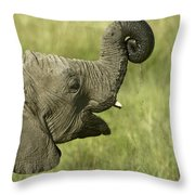 Squirting Water Throw Pillow