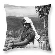 Sri Lanka Tea Plantation Throw Pillow