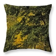 Seeing The Beauty In The Trees Throw Pillow