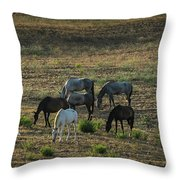 Sserenity Throw Pillow