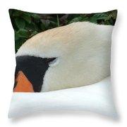 Sssh I'm Sleeping Throw Pillow