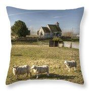 St Bartholomew Goodnestone Throw Pillow