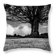 St. Benedict Abbey Single Tree In Summer Throw Pillow