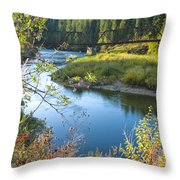 St. Joe River Throw Pillow