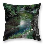 St Joe River Throw Pillow