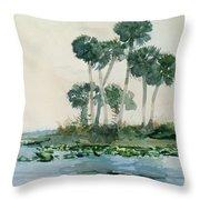 St John's River Florida Throw Pillow
