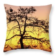 St Johns River Tree Throw Pillow