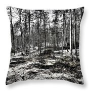 St Lawrence's Wood, Hartshill Hayes Throw Pillow