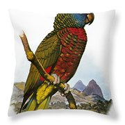 St Lucia Amazon Parrot Throw Pillow