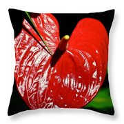 A Point To Your Heart Throw Pillow