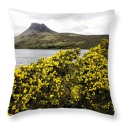 Stac Pollaidh Throw Pillow