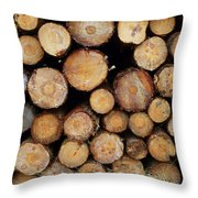 Stacked Timber Two Throw Pillow