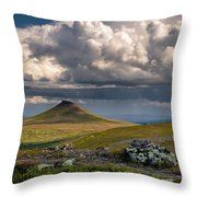 Staedjan Throw Pillow
