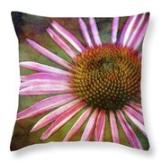 Staged 3563 Idp_2 Throw Pillow