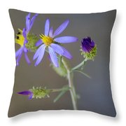 Stages Of Development Throw Pillow