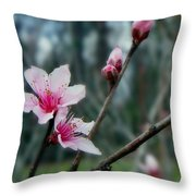 Stages Of Spring Throw Pillow