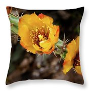 Staghorn Cactus Blossons Throw Pillow