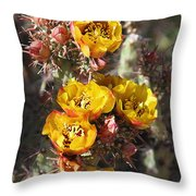 Staghorn Cholla Blossoms Throw Pillow
