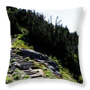 Stairs Along Skyline Trail Throw Pillow