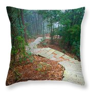 Stairs Down Mountain Throw Pillow