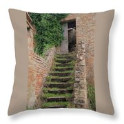 Stairway Less Traveled Throw Pillow