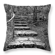 Stairway To Nature Throw Pillow