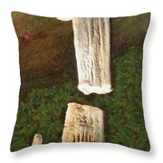 Stalacites And Stalagmites In A Cave Throw Pillow
