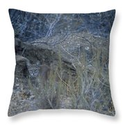 Stalked - Mountain Lion Throw Pillow