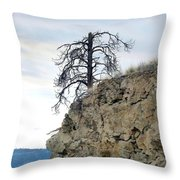 Stalwart Pine Tree Throw Pillow