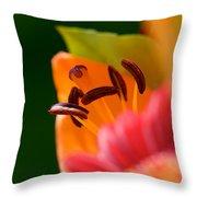 Stamen And Sunlight Throw Pillow