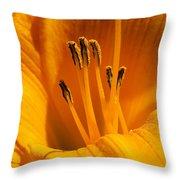 Stamens Throw Pillow