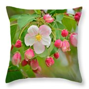 Stand Alone Japanese Cherry Blossom Throw Pillow