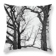 Stand Alones Throw Pillow