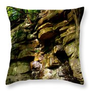 Stand In Amazement Throw Pillow