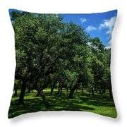 Stand Of Oaks Throw Pillow