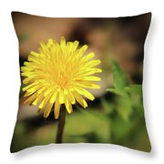 Stand Out - Dandelion Throw Pillow