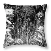 Stand Out In The Crowd Throw Pillow