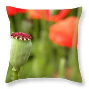 Standing Alone Throw Pillow