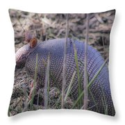 Standing Armadillo Throw Pillow