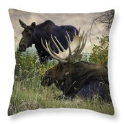 Standing Beside His Majesty Throw Pillow