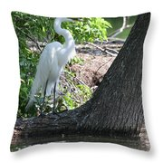 Standing By Shore Throw Pillow