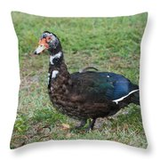 Standing Duck Throw Pillow