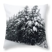 Standing Guard In Snow Throw Pillow