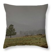 Standing In The Mist  Throw Pillow