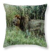 Standing Lion Throw Pillow
