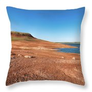 Standing On The Lakebed Throw Pillow