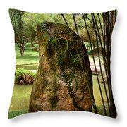 Standing Stone With Fern And Bamboo 19a Throw Pillow